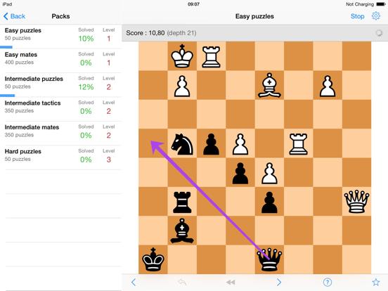 program chess tactics pro